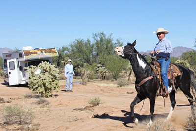 At the UA-Zonge Engineering test site in the Sonoran Desert near Tucson, Brad Cowan, of Cowan Horse Adventures in Southwest Tucson, takes his 1,300-pound mare for a trot across the buried fibre-optic cable, which is connected to a Helios detection unit in