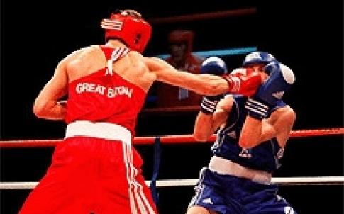 TE boxers