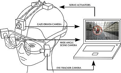 EyeSeeCam is a head-mounted gaze-driven camera that is controlled by eye movements. The video files contain an approximation of the retinal content and are recorded to the hard disk of a portable laptop computer.