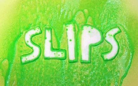 /a/j/e/TE_SLIPS.jpg