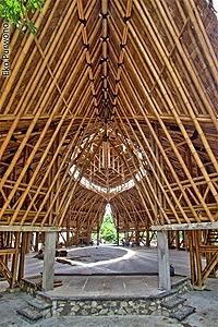 /d/y/t/TE_Bamboo_hall.jpg