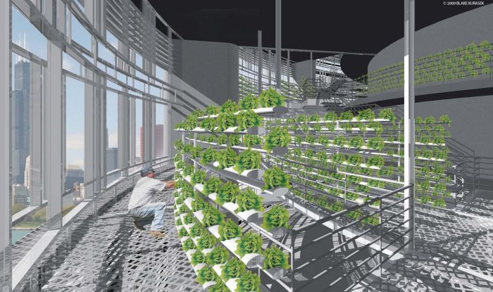 Could sky-farms like this represent the future of urban farming?