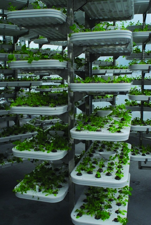 Alterrus Systems has installed a vertical farm on the rooftop of a Vancouver car-park