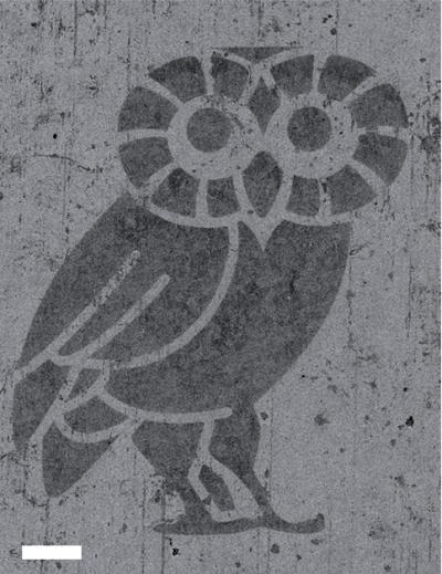 An atom-thick Rice Owl (scale bar equals 100 micrometers) was created to show the ability to make fine patterns in hybrid graphene/hexagonal boron nitride (hBN). In this image, the owl is hBN and the lighter material around it is graphene. The ability to