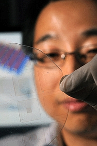 Georgia Tech researcher Wenzhuo Wu holds an array of piezotronic transistors capable of converting mechanical motion directly into electronic controlling signals. The arrays are fabricated on flexible substrates