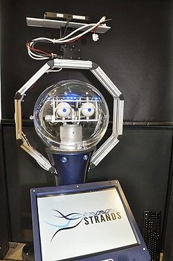 /p/o/x/TE_robot.jpg