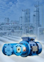 M Pumps magnetically coupled vane pump