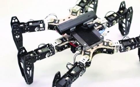 /i/h/a/TE_Hexapod_robot.jpg