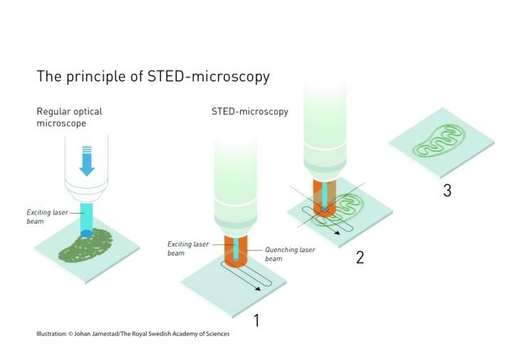 /o/y/v/TE_STED_Microscopy.jpg