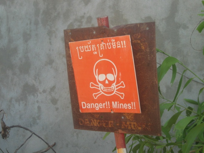 It's estimated that around 110 million landmines are buried in 70 countries around the world.