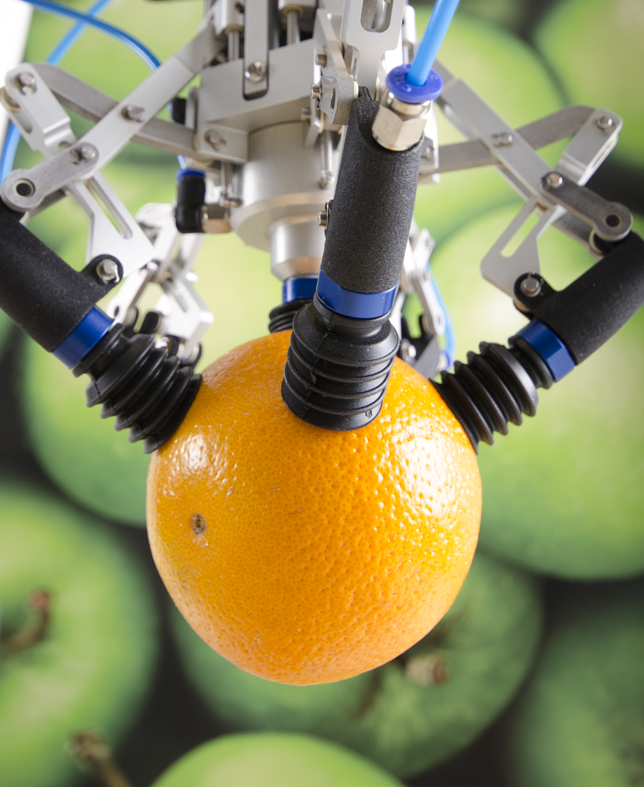 Fruit Picking Robot Solves Automation Challenge The