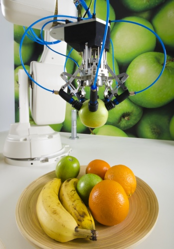 The robot is able to grip the fruit without damaging it