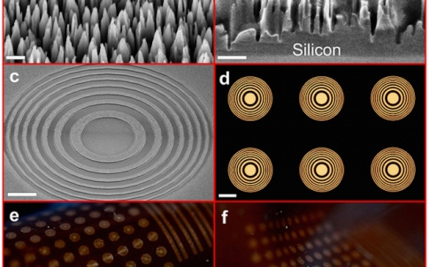 Tiny silicon nanowire towers make up dark regions of the flexible Fresnel zone lenses. Each individual lens resembles a bull's-eye of alternating light and dark. Arrays of lenses formed within a flexible polymer bend and stretch into different configurati