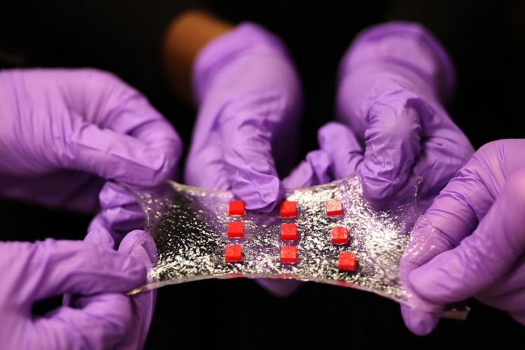 Here, a sheet of hydrogel is bonded to a matrix of polymer islands (red) that can encapsulate electronic components such as semiconductor chips, LED lights, and temperature sensors. (Credit: Melanie Gonick/MIT)
