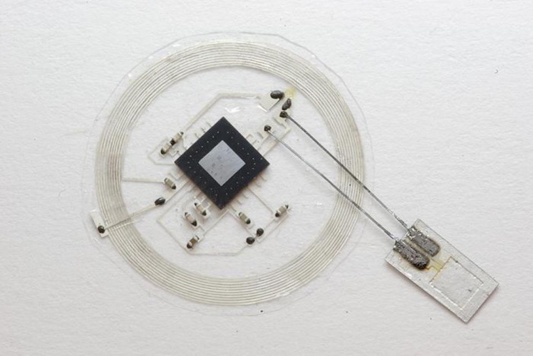 The small sensor connects to an embeddable wireless transmitter that lies on top of the skull (Image courtesy John A. Rogers)