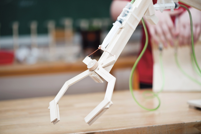 Could you help students to build and program robots?