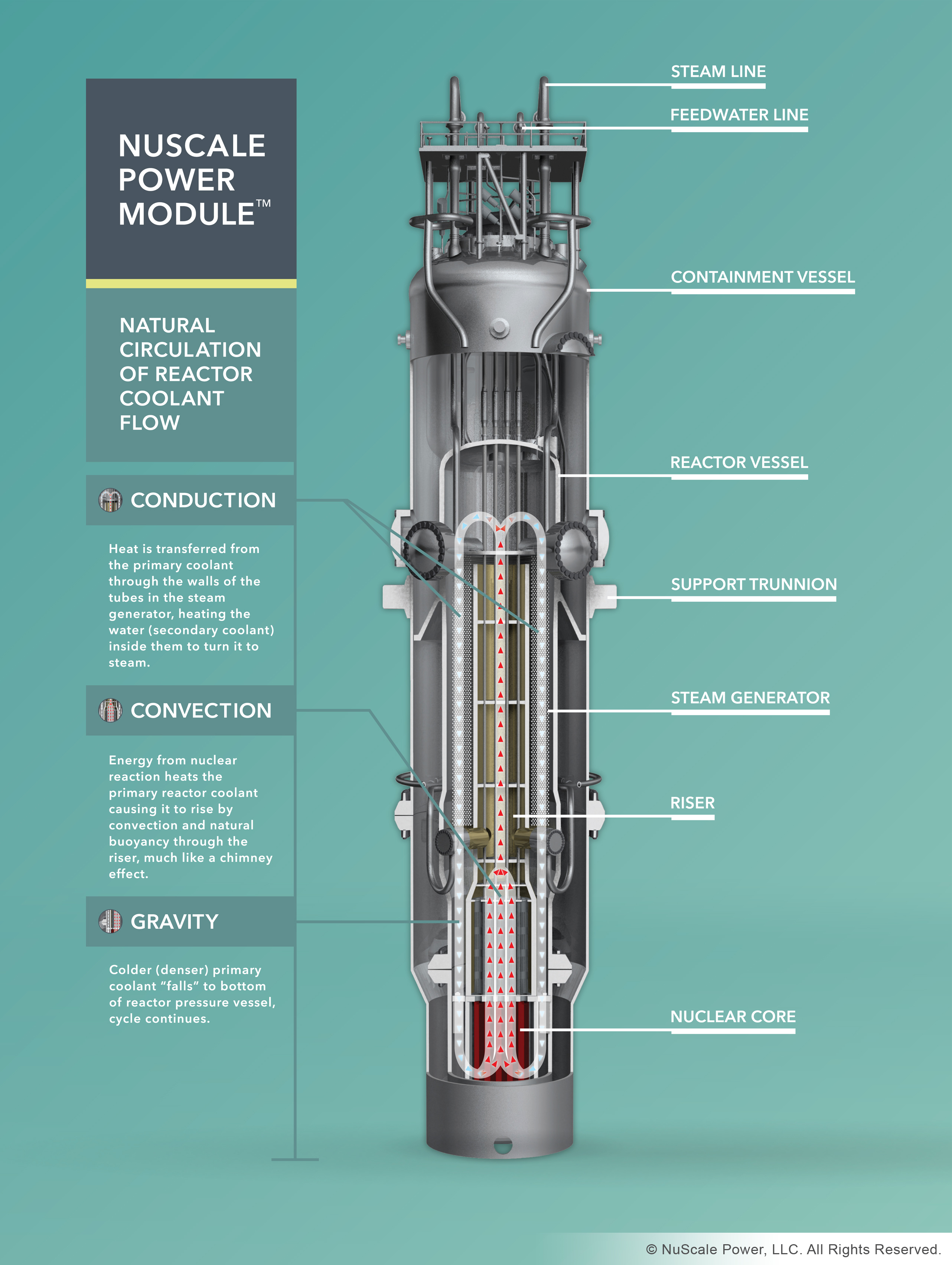 the role of nuclear energy in our lives today Nuclear physics positively influences our daily lives,  and energy production,  nuclear physics as we know it today is almost a hundred years old.