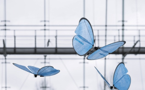 fesrto's giant robot butterflies bring a flamboyant touch for visitors to its factory