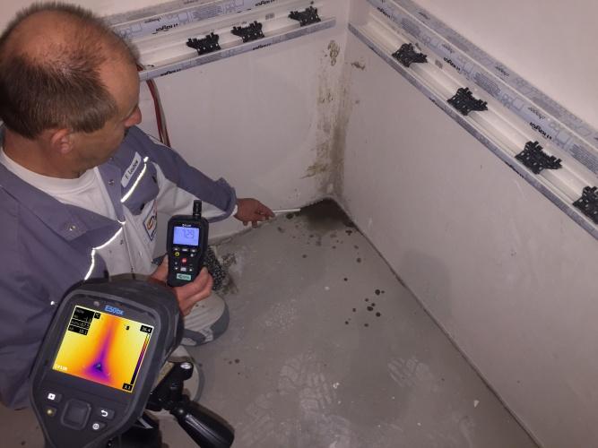 FLIR845 - Camera + meter image