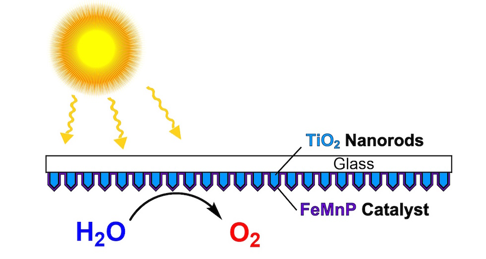 Scientists created a catalyst from iron, manganese and phosphorus and coated it evenly onto an array of titanium dioxide nanorods to create a highly efficient photoanode for artificial photosynthesis