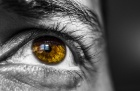 Artificial 2D retina show potential for sight restoration and health monitoring