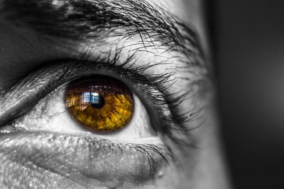 2D retina