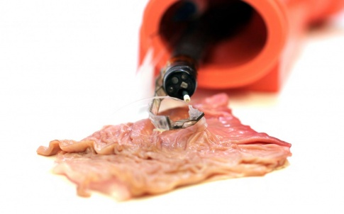 medical robotics harvard soft endoscope arm