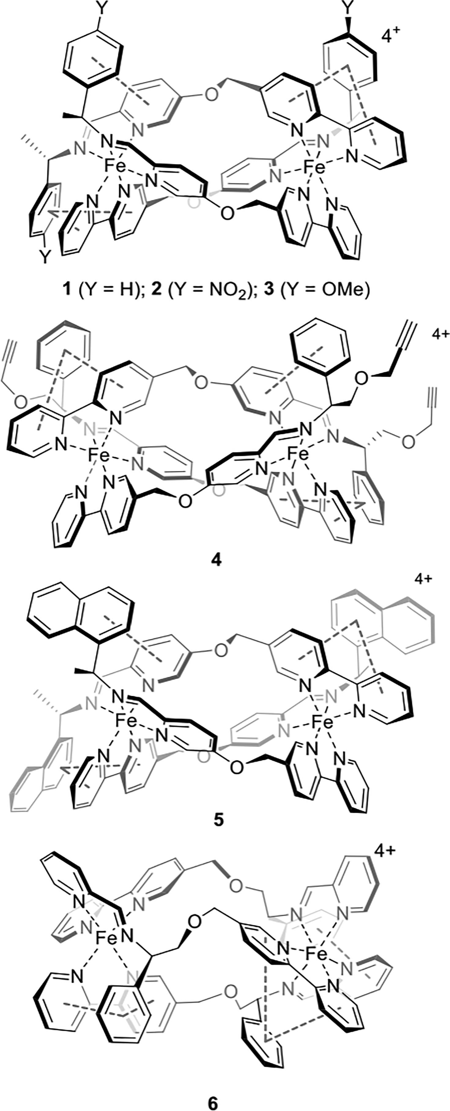 antifreeze complex
