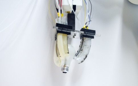 robotic gripper