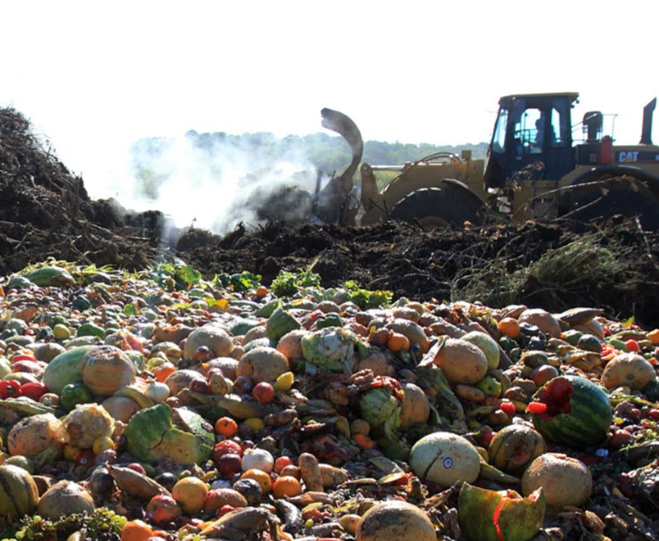 Building materials made from organic waste could help for Waste material items