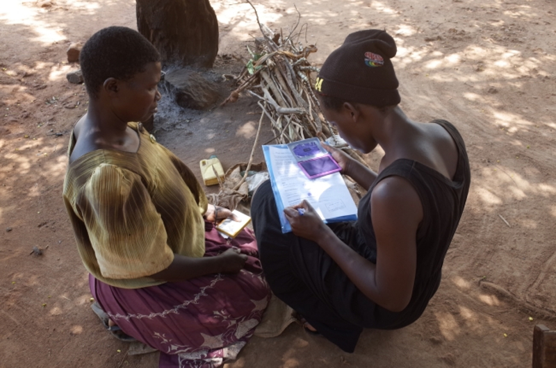 Fast and affordable field test could help fight against malaria