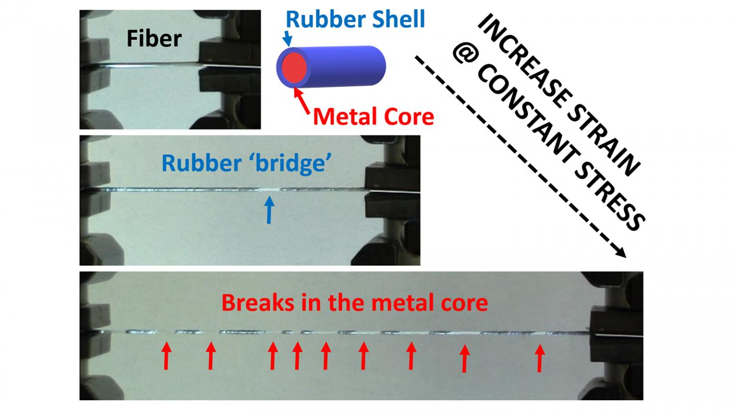 Stretchy but tough fibres have potential for robotics and textiles