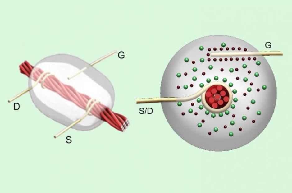 Thread-based transistors promise fully flexible electronics