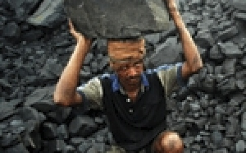 coal india 150