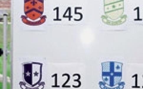 dla crests 150