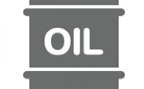 oilicon 150