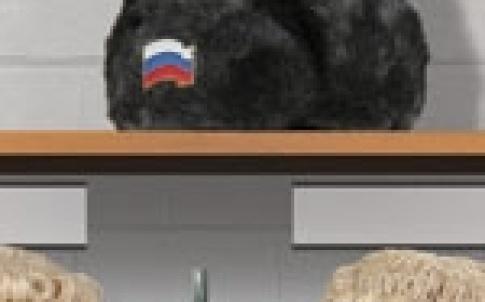 Bear bar 150