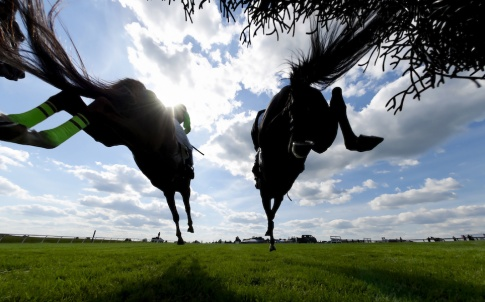 A low angle view of horsesing landing after jumping a hurdle during a steeplechase horse race.