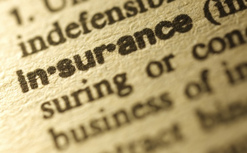 Dictionary Series - Insurance