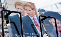 Pre-nuptial arrangements Royals Prince Harry and William