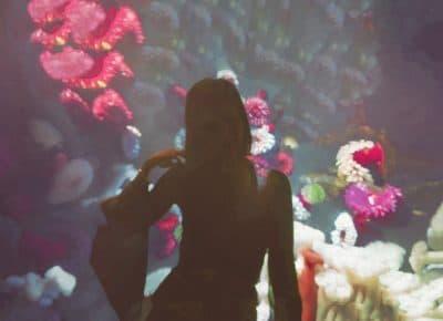 Profond comme lOcean 1