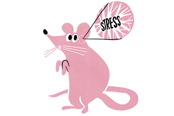 stress-14