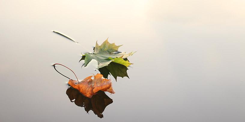 blad-vatten-metoder-hantera-konflikter-kommunicera