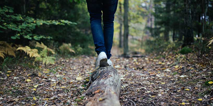 metoder-led-dig-sjalv-balans-stock-skog