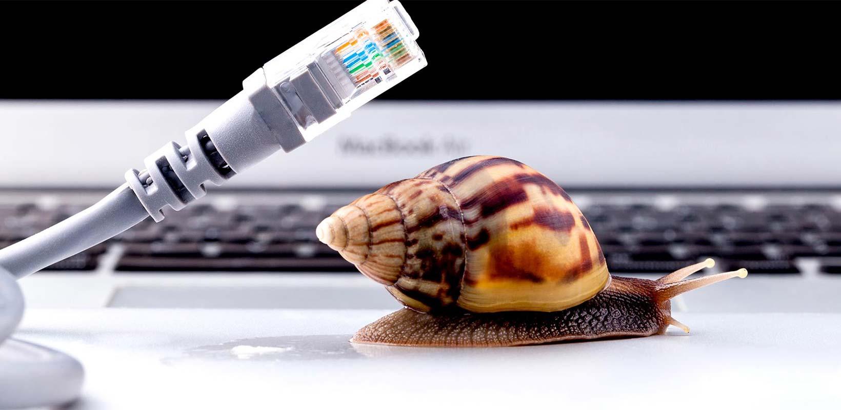 velocidade da internet
