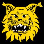 Seinajoen JK logo