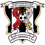 Barry Town United FC logo