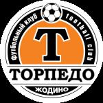FC Slavia Mozyr logo