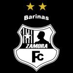 593094 logo