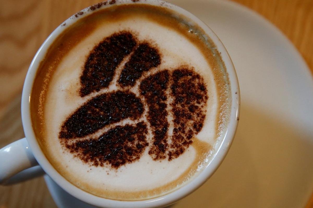 Kahve, Karaciğer Kanseri Riskini Yarı Yarıya Azaltıyor